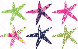 Lilly Pulitzer Adhesive Vinyl - Oracal 651